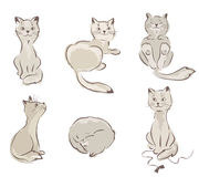 Ð¡ollection of cats Stock Photography