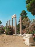 Ð ¡ olumns van de oude tempel in Libanon Stock Fotografie