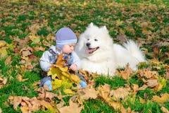 Ð'oy sta sedendosi con un cane bianco Fotografia Stock Libera da Diritti