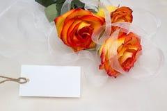 Оrange rose Stock Photography