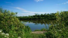 Ð-¡ torkhus av en liten flod i sommaren Arkivfoton