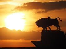 Ð'ull en la puesta del sol Imagen de archivo libre de regalías