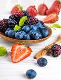 Ð'unch одичалых ягод стоковая фотография