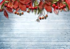 Ð  utumn与罚款叶子和莓果的葡萄酒背景 图库摄影
