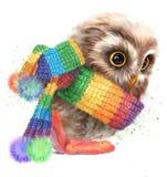 Оwl in einem gestreiften Schal Stockfotos