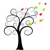 Ðutumn结构树 库存图片