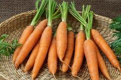 Свежая морковь в корзине, овощ корня стоковое изображение rf