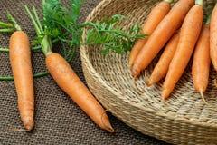 Свежая морковь в корзине, овощ корня стоковое фото rf