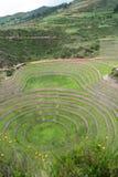 Священная долина, мурена, Cusco, Перу, 02/07/2019 стоковые фотографии rf