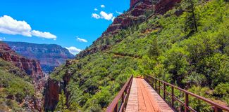 Северный след Kaibab в национальном парке гранд-каньона, Аризоне, Соединенных Штатах Америки стоковые фотографии rf