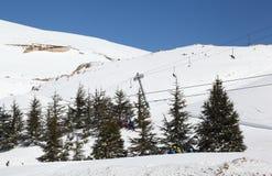 Сезон лыжи Ливана стоковое фото