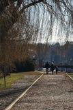 Семья идя в парк Herastrau во время осени стоковое изображение