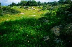 Серия Holyland - израильская сцена 11 зимы стоковое фото rf