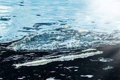 Сизоватый реальный лед в воде стоковые фото