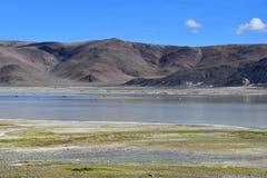 Сильно соляное озеро Drangyer Tsaka в Тибете в солнечном дне, Китае стоковые изображения