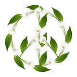 Символ мира, знак мира, лилия Calla, Zantedeschien, Zantedeschia, лилии Arum, Cantedeskia, kalijka, kalia иллюстрация штока