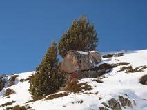 Скала на снежном наклоне против голубого неба с уединенным деревом на верхней части стоковое изображение rf