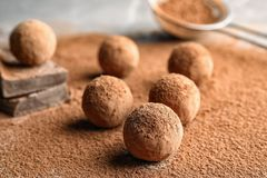 Сладкие сырцовые трюфеля шоколада напудренные с какао стоковое изображение