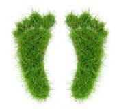 2 следа ноги травы стоковые изображения