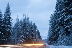 Следы света Snowy стоковые фото