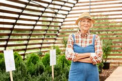 старший садовника счастливый стоковое изображение rf