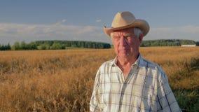 Старый кавказский человек в прогулке ковбойской шляпы в поле пшеницы на заходе солнца акции видеоматериалы