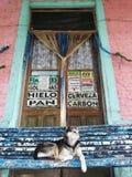 Старый магазин в маленьком городе стоковые фото