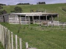 Старый деревянный сарай хранения на травянистых сельскохозяйственных угодьях стоковое изображение rf