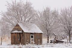 Старый сарай часть античной сельско-хозяйственной техники и деревья вокруг их предусматриван тонким слоем снега на холодный зимни стоковое фото rf