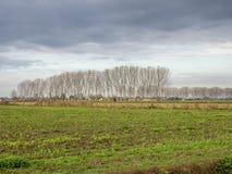 """Страна около Sant """"Angelo Lodigiano, Италии стоковые фото"""