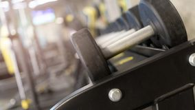 Строки резиновых гантелей в спортзале стоковые изображения rf
