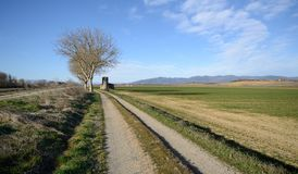 Сценарный взгляд аграрных полей n тосканская сельская местность стоковое изображение