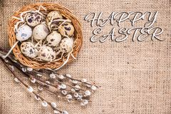 Счастливая предпосылка пасхи с яйцами в корзине и pussy-вербе стоковое фото rf