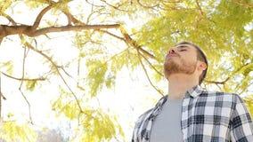 Счастливый расслабленный человек дыша свежим воздухом в парке сток-видео