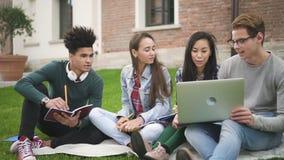 Средняя съемка взрослых многонациональных американских друзей человека и группы женщины используя технологию ноутбука coloboratin видеоматериал