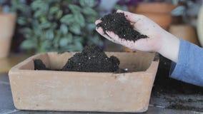 Среды выращивания или почва Hodling акции видеоматериалы