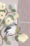 Ð¡ard with bird Royalty Free Stock Image