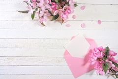 Ð¡ard with an pink envelope and pink flowers of apple tree on wooden board. Place for inscription. Mothers day royalty free stock photos