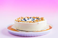 Ð¡heesecake with blueberries Royalty Free Stock Image