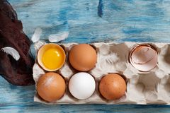 Сhicken eggs in a box. On  a blue wooden background Royalty Free Stock Image
