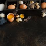 Сhicken and quail eggs in a box. On a dark background Royalty Free Stock Photos