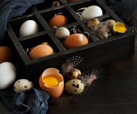Сhicken and quail eggs in a box. On a dark background Stock Photo