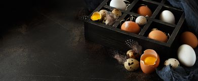 Сhicken and quail eggs in a box. On a dark background Royalty Free Stock Image