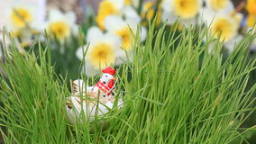 Ð¡hicken toy in green grass stock footage