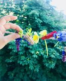 Сhildren`s hand and spring flowers royalty free stock photo