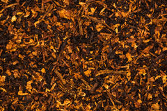 Ð¡hopped tobacco leaves Royalty Free Stock Images