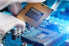 Электронный инженер компьютерной технологии Подъем оборудования C.P.U. компьютера обслуживания компонента материнской платы Ремон стоковая фотография