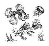 Эскиз руки вектора вычерченный иллюстрации рыб на белой предпосылке иллюстрация штока