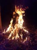 это естественный огонь стоковая фотография rf