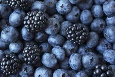 Ягоды текстуры закрывают вверх Взгляд сверху Черные и голубые ягоды Зрелые голубики и ежевики стоковые изображения